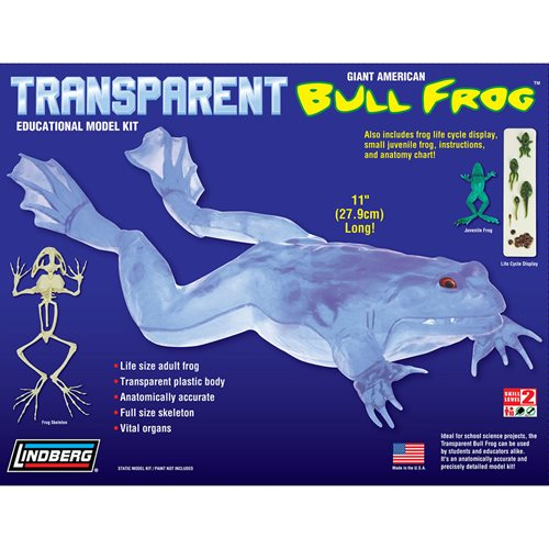 Transparent Bull Frog 11-Inch Model Kit