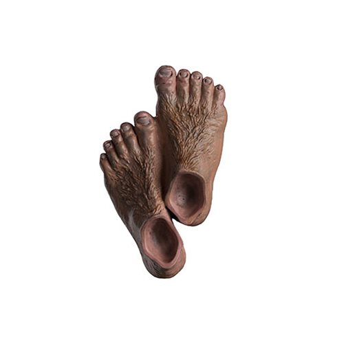 The Lord of the Rings Hobbit Feet Magnet