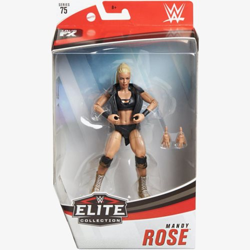 WWE Elite Collection Series 75 Action Figure Case