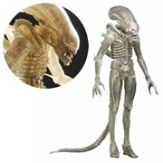 Alien Translucent White Prototype Suit Concept Xenomorph 1:4 Scale Action Figure