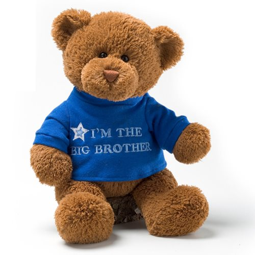 Message Bear Big Brother 12-Inch Plush