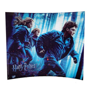 Harry Potter and the Deathly Hallows Running In The Woods Curved Glass StarFire Photo