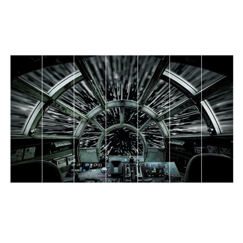 Star Wars Millennium Falcon Peel and Stick Wall Mural