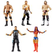 WWE Basic Figure Series 96 Action Figure Case