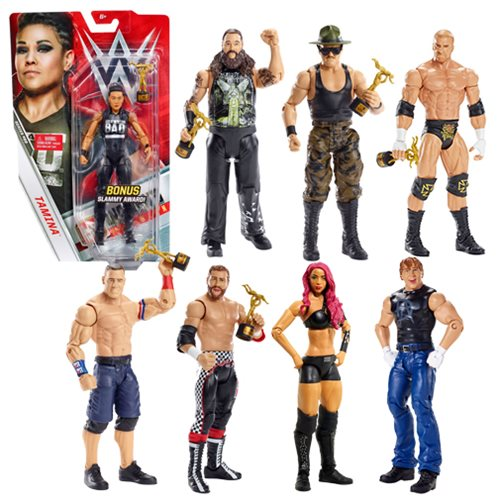 WWE Basic Figure Series 69 Action Figure Case