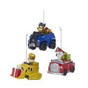 Paw Patrol On Truck Ornament Case