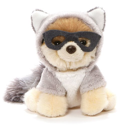 Boo the Dog Itty Bitty Boo Raccoon Plush #51