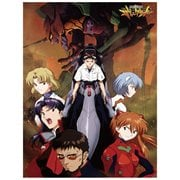 Evangelion Group In City Sublimination Throw Blanket