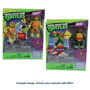 Teenage Mutant Ninja Turtles Street Training Pack Case