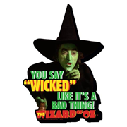 The Wizard of Oz Wicked Funky Chunky Magnet