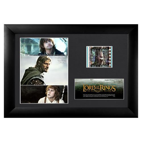 The Lord of the Rings: The Fellowship of the Ring Series 6 Mini Cell