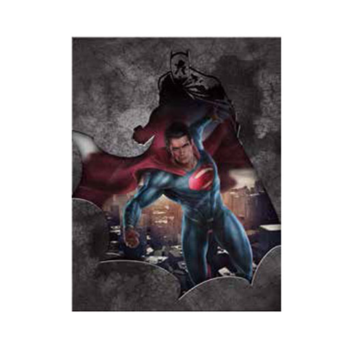 Batman v Superman: Dawn of Justice Canvas Art, Not Mint