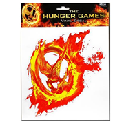 Hunger Games Movie District 12 Frame and Mirror ...