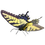 Tiger Swallowtail Butterfly Metal Earth Model Kit