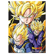 Dragon Ball Z Crew Wall Scroll