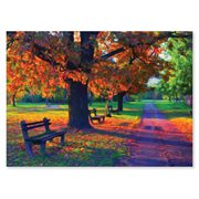 Walk in the Park 1,500-Piece Jigsaw Puzzle