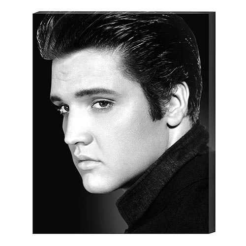 Elvis Presley Portrait Large Stretched Canvas Print