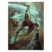 The Witcher 3 Wild Hunt Ciri and the Wolves Puzzle
