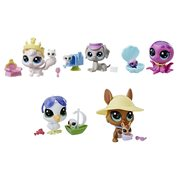 Littlest Pet Shop Pairs Wave 2 Revision 1 Case