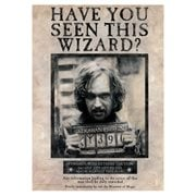 Harry Potter Sirius Black MightyPrint Wall Art Print