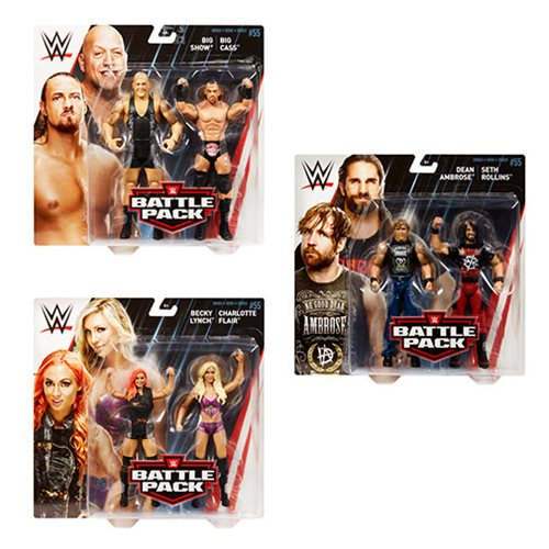 WWE Basic Series 55 Action Figure 2-Pack Case