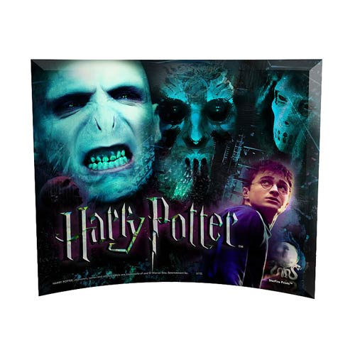 Harry Potter WOHP Voldemort and the Death Eaters Curved Glass StarFire Photo