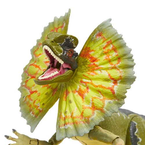 Jurassic Park Dilophosaurus 6-Inch Scale Amber Collection Action Figure