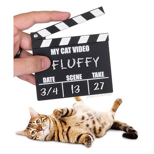 Cat Video Wood Clapperboard