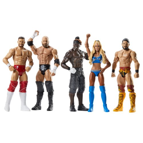 WWE Basic Figure Series 106 Action Figure Case