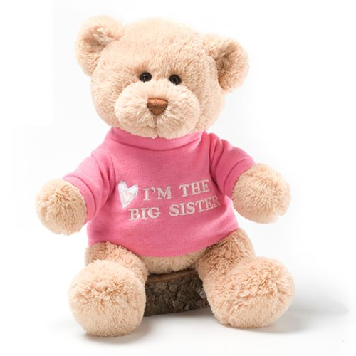 Message Bear Big Sister 12-Inch Plush