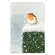 Marjolein Bastin Red Breasted Robin MightyPrint Wall Art Print