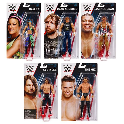 WWE Basic Figure Series 87 Action Figure Case