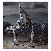 Alien Covenant Xenomorph 7-Inch Action Figure