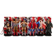 WWE Elite Collection Series 59 Action Figure Case