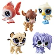 Littlest Pet Shop Single Pets Wave 2 Revision 1 Case