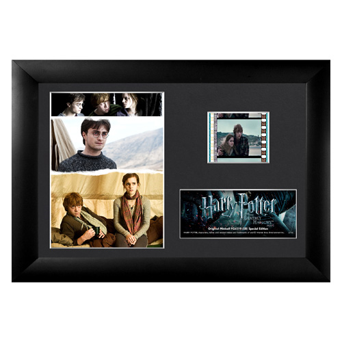 Harry Potter and the Deathly Hallows Part 1 Series 8 Mini Cell