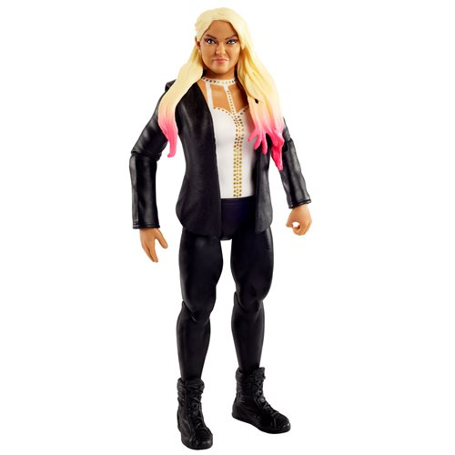 WWE Basic Figure Series 104 Action Figure Case