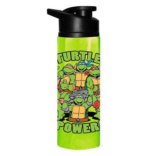 Teenage Mutant Ninja Turtles Turtle Power Stainless Steel Water Bottle