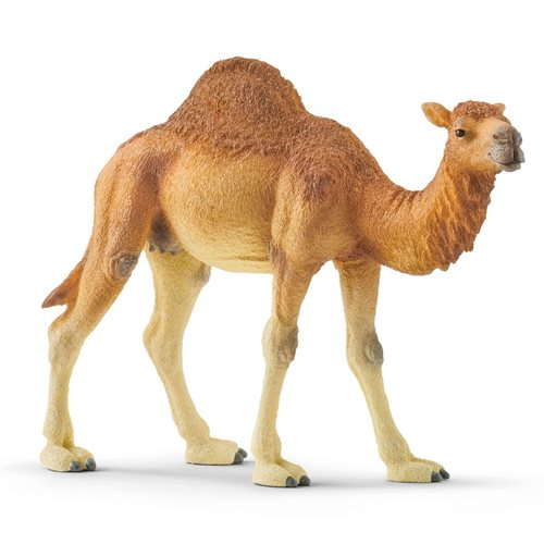 Dromedary Collectible Figure