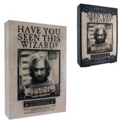 Harry Potter Sirius Black Luminart Light-Up Artwork