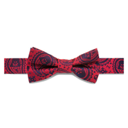 Star Wars Darth Vader Paisley Boys Silk Bowtie