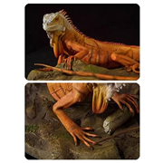 Cold-Blooded Collectibles Red Iguana Statue Sculpture
