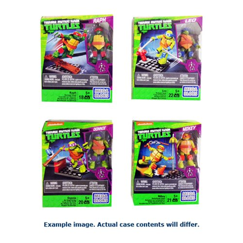 Mega Bloks TMNT Training Packs Case