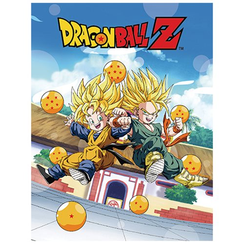 Dragon Ball Z Trunks and Goten Sublimination Throw Blanket